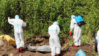 Photo of कोरोनाबाट मृत्यु हुने २५१ पुगे, एकैदिनमा १२ जनाको मृत्यु