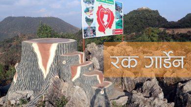 Photo of रोल्पाको 'रक गार्डेन' अर्थात् ढुङ्गे बगैंचा (फोटो फिचर)