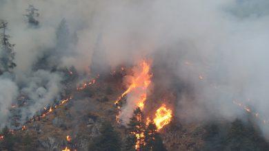 Photo of घाँस पलाउने भन्दै स्थानीयले लगाउँछन् वनमा आगो