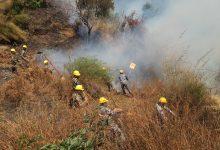 Photo of आगोबाट मानव बस्ती जोगाउनै हम्मेहम्मे