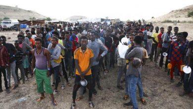 Photo of इथियोपियाका हिंसा पीडित ३८ लाख नागरिकलाई मानवीय सहायता प्रदान