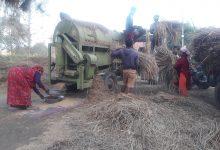 Photo of किसानलाई बेमौसमी बर्षाले डुवाएको धान बाली स्याहार्ने चटारो